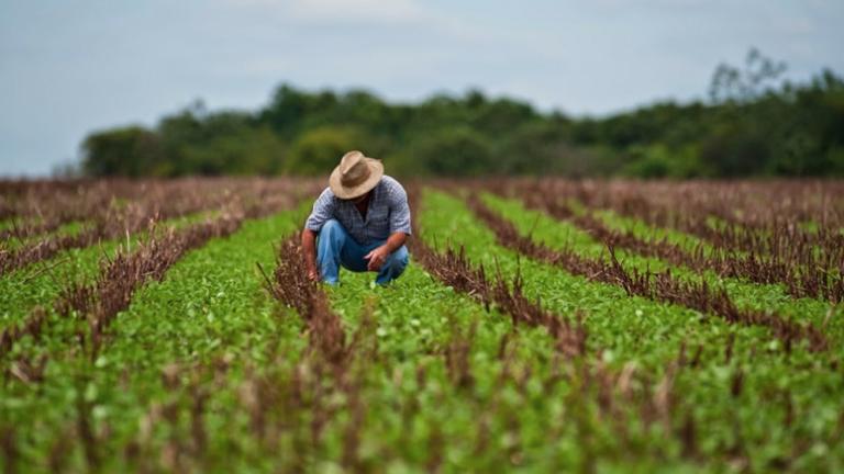 Autoridades participarán de foro sobre agricultura