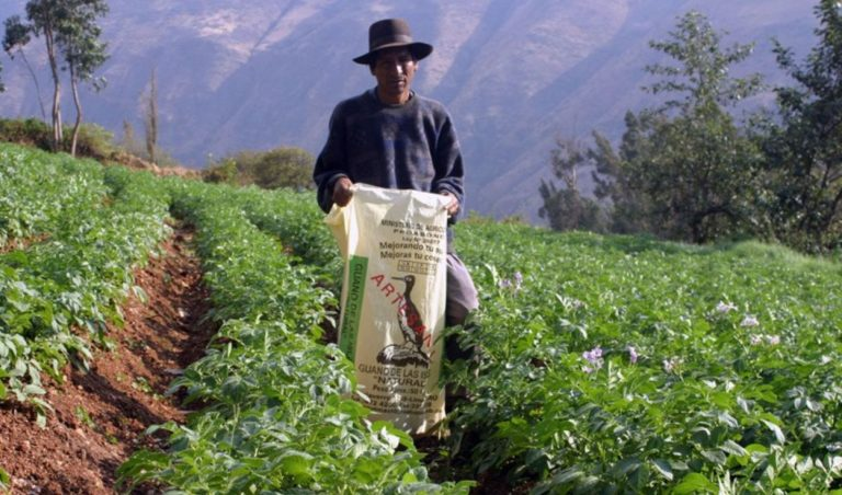 Ley agraria: expertos en contra de que beneficios tributarios recién se eliminen en 2028